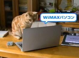 UQ-WiMAX5